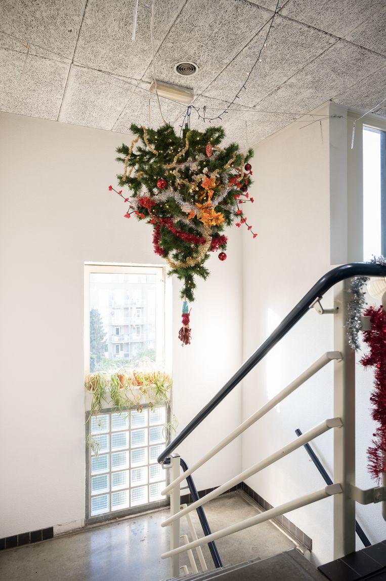 Kerstboom van Jonathan Franklin (37) en zijn buurvrouw Margreet Nol (42). Beeld Maarten Boswijk