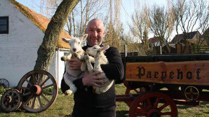 Boer Andy van Hoeve Paepehof is één van de 47 West-Vlaamse ambassadeurs