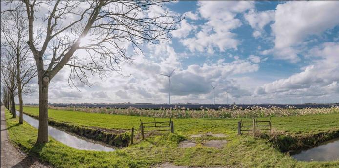 Een impressie van hoe het energielandschap er de komende jaren in de polder Rijnenburg uit kan komen te zien.
