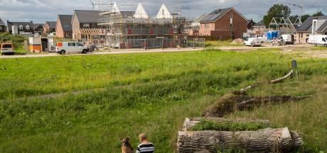 Wijhenaren mogen nieuw park Woeste Wijhe ontwerpen: 'Hoe mooi is dat?'