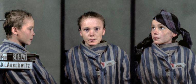 De ingekleurde foto's van het 14-jarige Poolse meisje Czesława Kwoka dat samen met haar moeder werd omgebracht in Auschwitz, grijpt direct naar de keel..
