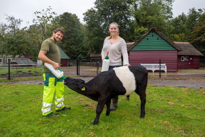 Vrijwilliger Duncan en stagiaire Sanne van Holywood geven kalfje Jeroen melk. ,,De dieren moeten elke dag gevoerd worden en dat kost geld'', zegt voorzitter Jordi van der Poel.