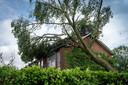 Bomen vielen in Rheden niet alleen op auto's, maar ook op huizen.