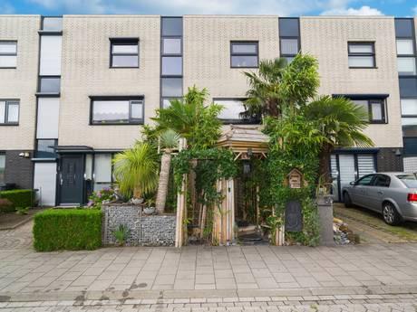 Junglehuis in Roosendaal te koop: 'Je hoeft niet meer op vakantie'