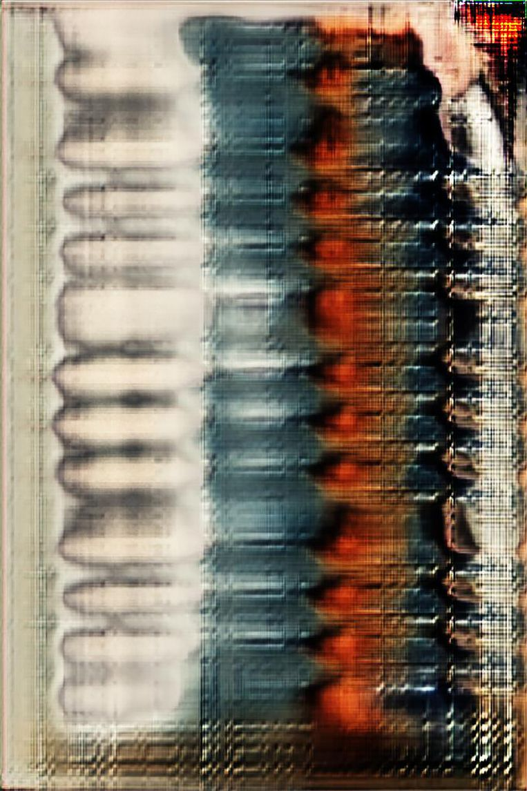 Three Thousand Tigers van Irene Fenara, die met een algoritme visuele eigenschappen destilleerde uit 3000 online foto's van tijgers en zo de archetypische  tijger creëerde.  Beeld Irene Fenara
