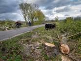In Bemmel wordt met hoongelach gereageerd als 'hoor de wind waait door de bomen' klinkt