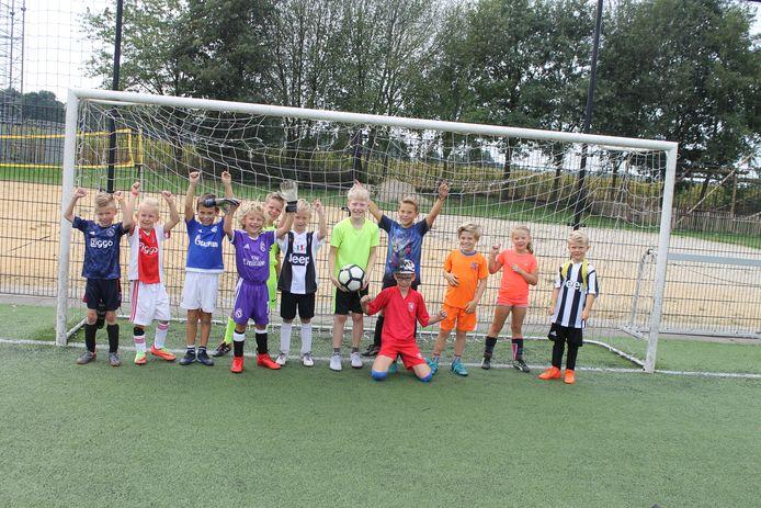 Kinderen in de gemeente Berkelland kunnen gewoon door blijven sporten in de zomervakantie. Via de Zomertoer-Sportapp kunnen zij zich opgeven voor voetbal, basketbal, volleybal en gymnastiek.