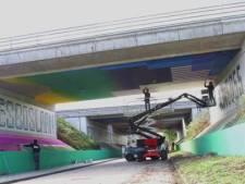 Nieuwe Blind Wall aan Liesboslaan haalt CO2 uit de lucht