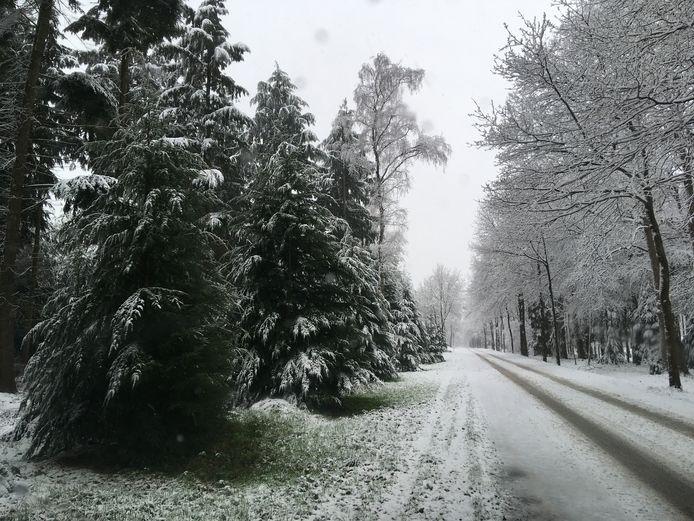 Wat een prachtige foto's komen er binnen via MijnBD. Zoals deze uit Esbeek.