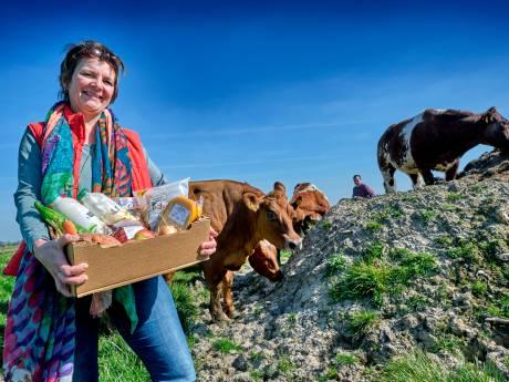 Noodfonds om ondernemers door de crisis te loodsen: 'Zonder hen een saaie boel in de Hoeksche Waard'