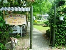 School zoekt pand in Zutphen of Deventer