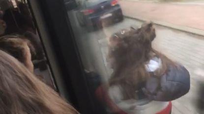 """VIDEO. Meisje hangt anderhalve minuut vast aan deur van rijdende lijnbus: """"Het enige wat ik dacht, was zeker niet loslaten"""""""