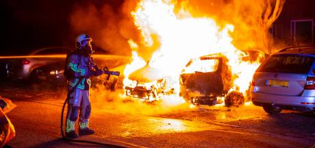 Vlammenzee op Amethistdijk in Roosendaal: vier auto's en boom beschadigd bij brand