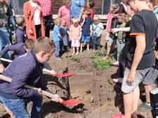Kinderen graven tijdcapsule in: ′Over 100 jaar lezen hoe wij het hadden in Tull en 't Waal′