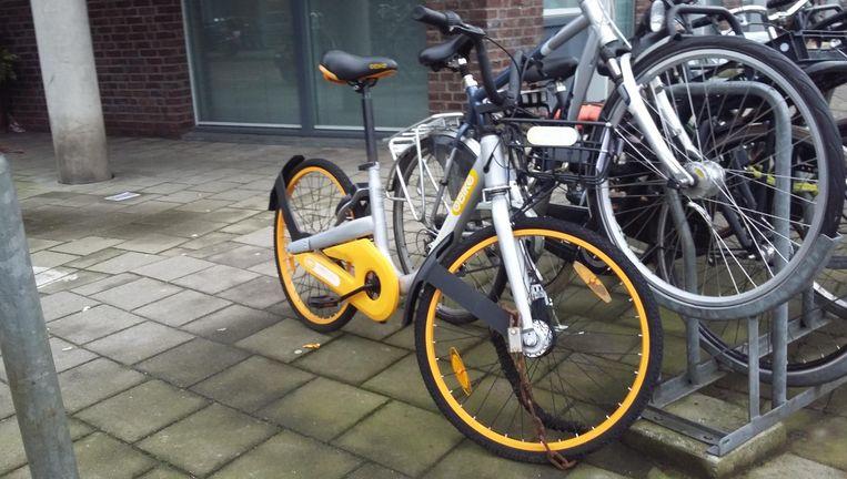 Afgelopen zomer zijn duizenden deelfietsen op de Amsterdamse stoepen geplaatst Beeld Marc Kruyswijk