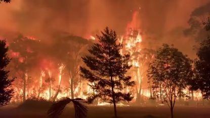 Australische hoofdstad Canberra gedeeltelijk ontruimd door nieuwe bosbrand