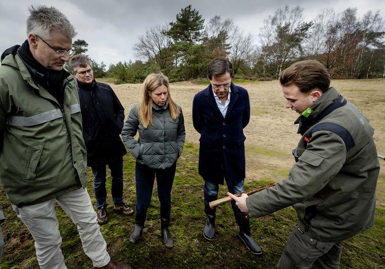 Premier Mark Rutte en minister Carola Schouten van landbouw, natuur en voedselkwaliteit  bezochten eerder dit jaar de Veluwe om zich te laten informeren over de gevolgen van stikstofneerslag in het natuurgebied. Beeld ANP