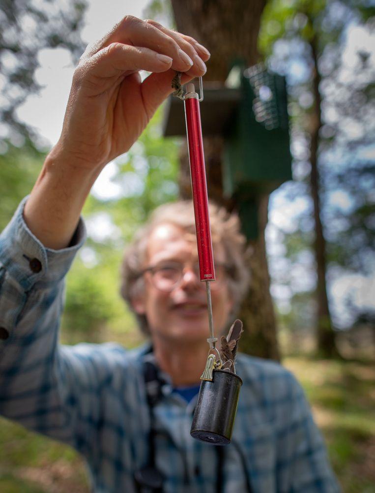 Christiaan Both weegt een vliegenvanger. Beeld Herman Engbers