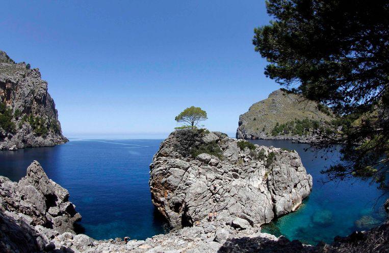 Mallorca, Illustratiebeeld.