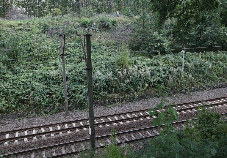 Nabij het spoor ligt de veelbesproken nazitrein mogelijk begraven. Poolse autoriteiten hebben de omgeving afgesloten.