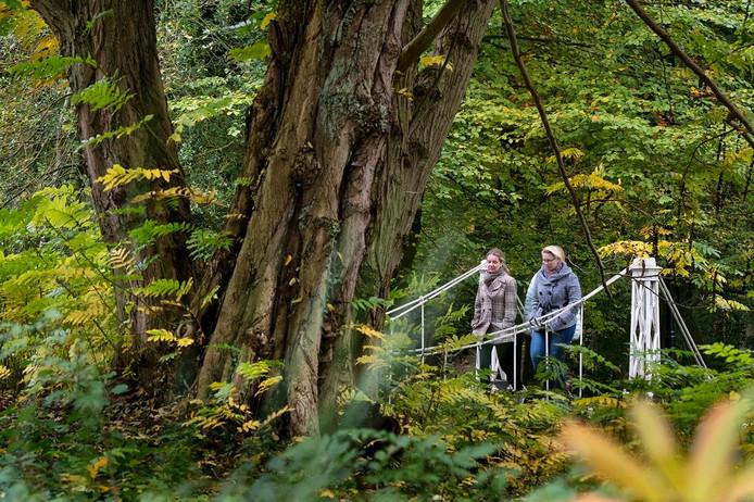Herfstwandeling in park Sonsbeek in Arnhem.