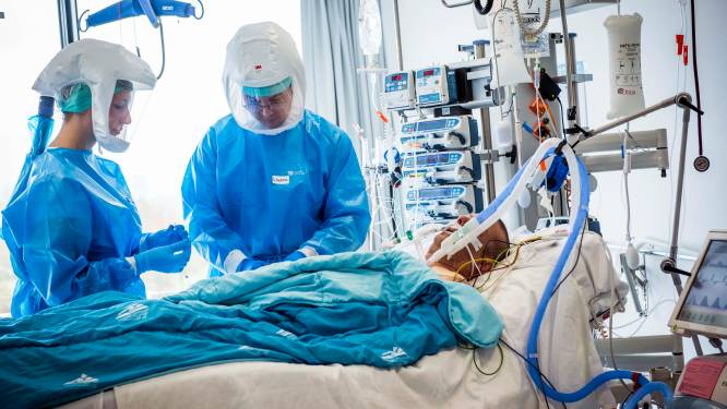 """Leuvense studie brengt reactie in longen van ernstig zieke Covid-19-patiënten in beeld: """"We begrijpen nu beter wat er misloopt bij kritiek zieke patiënten"""""""