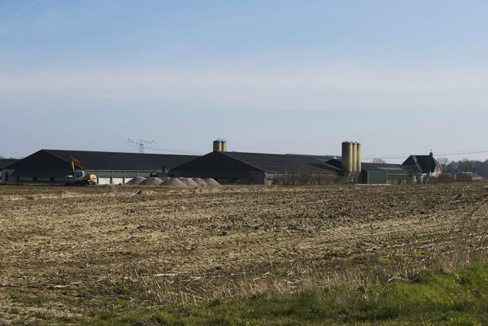 Het agrarisch bedrijf aan de Oosterseweg in Elshout dat graag wil uitbreiden om 84.000 vleeskuikens extra te gaan houden.