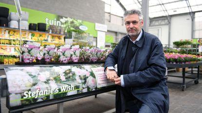 AVEVE verkoopt vierduizend rozen voor Stefanie