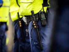 Zoetermeer meldt zich voor proef met bewapende boa's