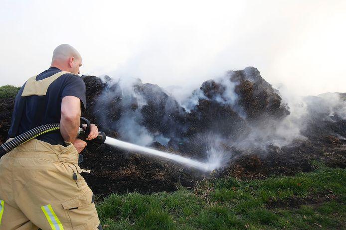 De brandweer aan het werk bij de grasbrand in Eindhoven.