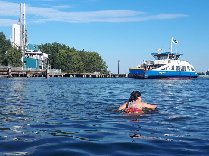 """De 7-jarige dochter van Jeroen Pater zocht verkoeling in 't IJ. ,,Uiteraard met zwemdiploma's op zak, of had ze de pont gemist?"""""""