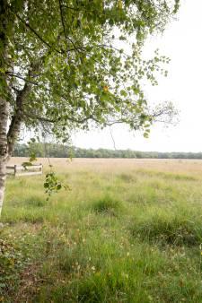 Rekenkamer: compensatie kwetsbare natuur Overijssel onvoldoende