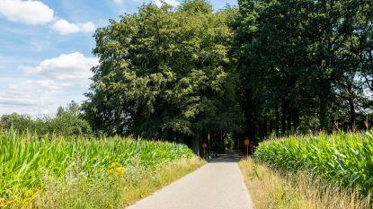 Rukwinden tot 85 km/u op komst: vermijd Holleweg