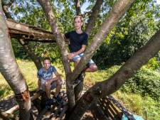 Boomhut van Zedi en Jesper in Waalre is nooit af