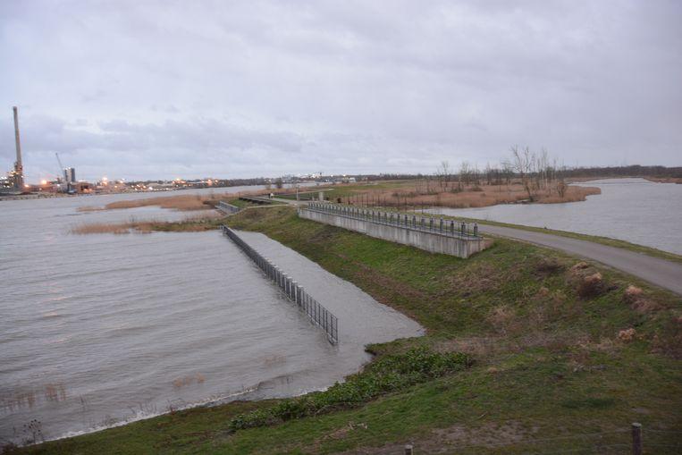 De waterstand op de Schelde was ook vandaag alarmerend hoog.