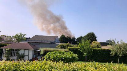 Sparrenverbranding zorgt voor enorme rookpluim