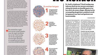 Beste samenstelling om virus te misleiden: twee gezinnen van vier