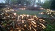 2 hectare bos: na roof nog een derde over