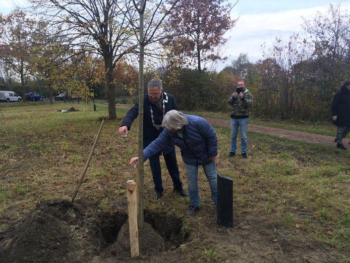 Anja Koppelman giet met de burgemeester bubbels in het plantgat bij de boom voor haar vader Piet Warrens