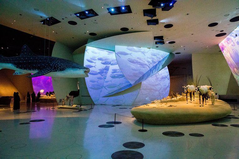 In het Nationale Museum van Qatar geen stoffige vitrinekasten, maar arty filmprojecties op wanden en voorwerpen die staan opgesteld als kunstinstallaties.  Beeld Marie Wanders