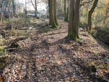 Foutje van waterschap: eeuwenoude verdedigingswal tussen Aarle-Rixtel en Bakel afgegraven