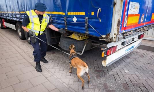 Een hondengeleider van de Koninklijke Marechaussee controleert vrachtwagens op eventuele verstekelingen, die via Hoek van Holland met de boot naar Harwich gaan. (archieffoto)
