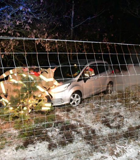 Groot gat in heg in Arnhem door auto die er doorheen rijdt