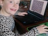 Jeugdschakers uit Apeldoorn spelen nu via internet en kunnen gezellig chatten tegelijk