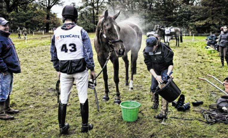 Ruiter Laurence Hunt (43) kijkt hoe zijn paard On Q for Gold na de finish wordt opgevangen. ( FOTO PATRICK POST) Beeld Patrick Post
