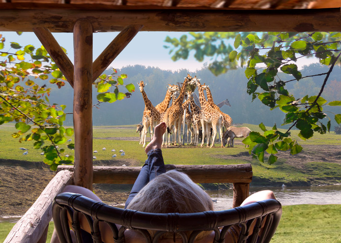 Een impressie van een van de lodges in het nieuwe Safari Resort.