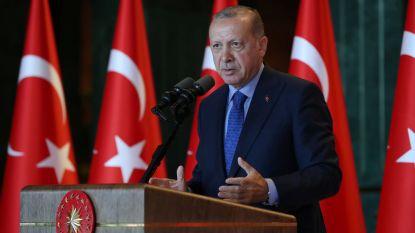 Waarom president Erdogan blaft, maar niet zal bijten