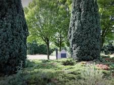 Gesneuvelden op begraafplaats Molenhoek verdienen beter monument