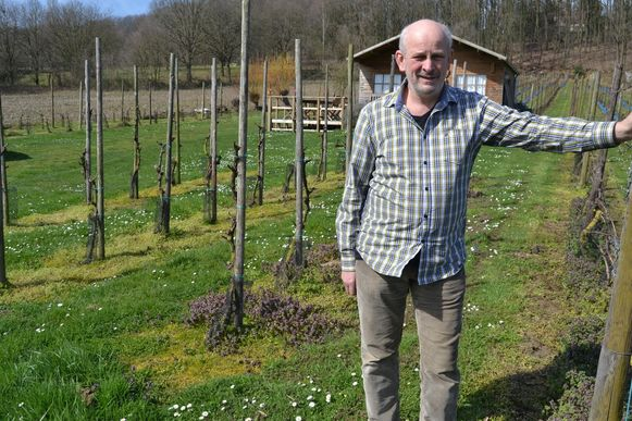 Daniël Vandervaeren in zijn wijngaard.