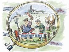 Dorpspolitiek kan het debat in Maas en Waal smoren